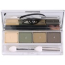 Clinique All About Shadow Quad fard ochi culoare 05 On Safari (Eye Shadow Quad) 4,8 g