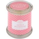 Country Candle Apple Blossom illatos gyertya    üvegben fedővel