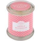 Country Candle Apple Blossom vonná svíčka   ve skle s víčkem
