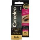 Delia Cosmetics Cameleo krémová profesionální barva na obočí bez amoniaku odstín 1.0 Black 15 ml