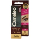 Delia Cosmetics Cameleo Coloração cremosa profissional para sobrancelhas sem amoníaco tom 3.0 Dark Brown 15 ml