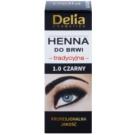 Delia Cosmetics Henna Farbe für die Augenbrauen Farbton 1.0 Black 2 g + 2 ml