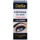 Delia Cosmetics Henna barva na obočí odstín 1.0 Black 2 g + 2 ml