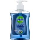 Dettol Antibacterial  250 ml