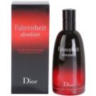 Dior Fahrenheit Fahrenheit Absolute (2009) toaletná voda pre mužov 100 ml