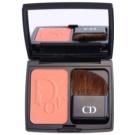 Dior Diorblush Vibrant Colour fard de obraz sub forma de pudra culoare 556 Amber Show  7 g