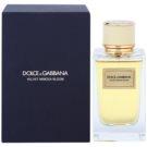 Dolce & Gabbana Velvet Mimosa Bloom woda perfumowana dla kobiet 150 ml