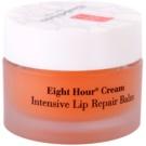 Elizabeth Arden Eight Hour Cream Intensive Lip Balm  10 g
