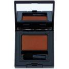 Estée Lauder Pure Color Envy Matte Long-Lasting Eyeshadow With Applicator Color 25 Fierce Sable 1,8 g