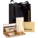 FAB Brows Kit popoln videz obrvi v sekundi odtenek Dark Brown (Brush, 6 pcs Stencils, Eyebrow Mineral Powder) 1,985 g