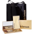 FAB Brows Kit popoln videz obrvi v sekundi odtenek Chocolate (Brush, 6 pcs Stencils, Eyebrow Mineral Powder) 1,985 g