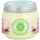 Farmona Magic Time Spring Awakening шовкове масло для тіла для живлення та зволоження  270 мл