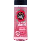 Farmona Tutti Frutti Ceramide Rebuild Shampoo for Dry and Damaged Hair Ceramides & Raspberry (Strength and Flexibility) 400 ml