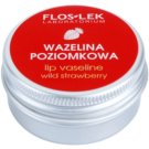 FlosLek Laboratorium Lip Care Wild Strawberry wazelina do ust  15 g