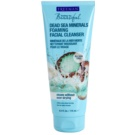 Freeman Feeling Beautiful tisztító tej az arcra Dead Sea Minerals (Foaming Facial Cleanser) 175 ml