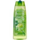 Garnier Fructis Fruit Explosions posilující šampon pro normální až mastné vlasy (Citrus Mint Fresh) 250 ml