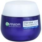Garnier Visible 55+ Night Cream For Skin Rejuvenation  50 ml