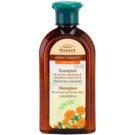Green Pharmacy Hair Care Calendula Shampoo For Normal To Oily Hair (0% Parabens, Artificial Colouring, SLS, SLES) 350 ml