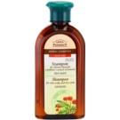 Green Pharmacy Hair Care Ginseng Shampoo für fettige Haare und trockene Haarspitzen  350 ml