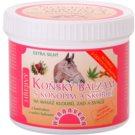 Herbavera Body Massage Pferdebalsam mit Hanf und Zimt  500 ml
