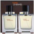 Hermès Terre D'Hermes подаръчен комплект XXI. тоалетна вода 2 x 50 ml