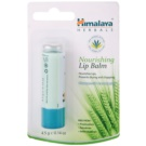 Himalaya Herbals Lip Care vyživujúci balzam na pery (Prevents Drying And Chapping) 4,5 g