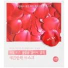 Holika Holika Hydrogel Mask hydratační maska pro rozjasnění a vyhlazení pleti (Rose Petals) 32 g