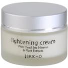 Jericho Face Care crema iluminatoare impotriva petelor (Lightening Cream) 50 ml