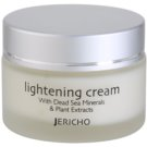 Jericho Face Care aufhellende Crem gegen Pigmentflecken (Lightening Cream) 50 ml