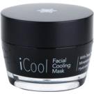 Jericho iMask Collection iCool kühlende Maske für die Haut mit Mineralien aus dem Toten Meer (Paraben - Free) 50 g