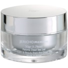 Jericho Premium máscara de pele com efeito auto aquecedor (With Dead Minerals, Dunaliella, Seaweed And Omega3) 50 g