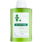 Klorane Nettle šampon za mastne lase (Seboregulating Shampoo with Nettle Extract) 200 ml