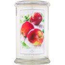 Kringle Candle Cortland Apple illatos gyertya  624 g