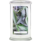 Kringle Candle Eucalyptus Mint Scented Candle 624 g