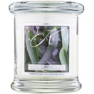 Kringle Candle Eucalyptus Mint Scented Candle 127 g