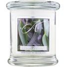 Kringle Candle Eucalyptus Mint lumanari parfumate  127 g