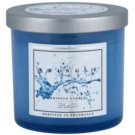 Kringle Candle Splash ароматизована свічка  141 гр