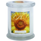 Kringle Candle Sunflower lumanari parfumate  411 g mediu