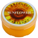 Kringle Candle Sunflower čajová sviečka 35 g