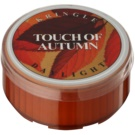 Kringle Candle Touch of Autumn świeczka typu tealight 35 g