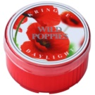 Kringle Candle Wild Poppies Teelicht 35 g
