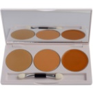 Kryolan Dermacolor Camouflage System Palette 3 Correctors With Mirror And Applicator Color DC 1 (Camouflage Creme Trio Set) 10 g