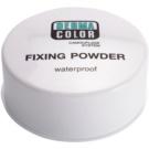 Kryolan Dermacolor Camouflage System wasserfester Fixierpuder Großpackung Farbton P 11 (Waterproof Fixing Powder) 60 g