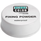 Kryolan Dermacolor Camouflage System voděodolný fixační pudr odstín P 11 (Waterproof Fixing Powder) 20 g