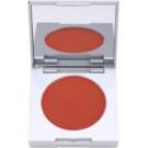 Kryolan Basic Face & Body kompaktno rdečilo s čopičem in ogledalom odtenek Shading Brown 8,5 g
