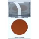 Kryolan Basic Eyes tónovací pudr na obočí odstín Auburn 3,5 g