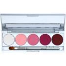 Kryolan Basic Eyes Palette mit 5 Lidschatten  inkl. Spiegel und Pinsel Farbton Abu Dhabi Matt/Iridescent 7,5 g