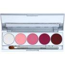 Kryolan Basic Eyes paletka cieni do powiek 5 kolorów z lusterkiem i aplikatorem odcień Abu Dhabi Matt/Iridescent 7,5 g