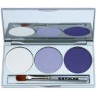 Kryolan Basic Eyes Palette mit Lidschatten inkl. Spiegel und Pinsel Farbton Smokey Purple 7,5 g