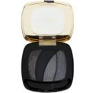 L'Oréal Paris Color Riche Shocking oční stíny s aplikátorem odstín S13 (Magnetic Black) 2,5 g